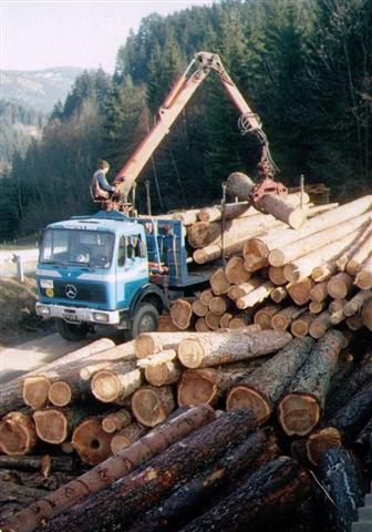 Holztransporte_WeissTrans3